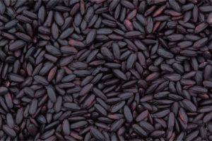 黒米の特徴